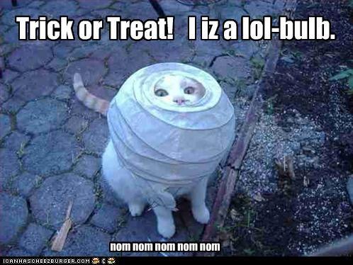 bulb caption captioned cat halloween lamp lightbulb lol meowloween paper stuck trick or treat - 4102648064
