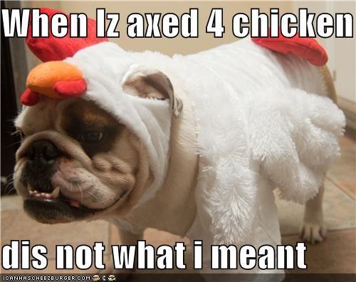 bulldog chicken clothes costume do not want dress up halloween halloween costume - 4104997120