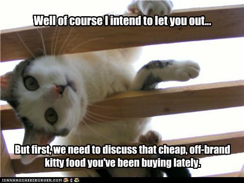 cage,caption,captioned,cat,discuss,food,human,intension,kitty food,off brand,prisoner,problem,we need to talk