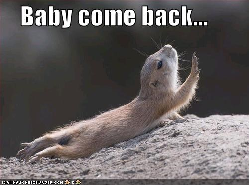 baby,begging,caption,captioned,come back,desperate,prairie dog,reaching