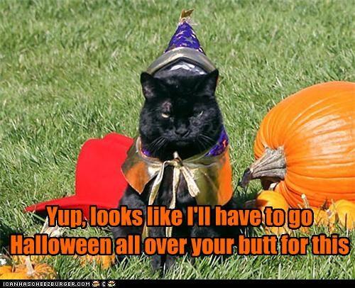 caption captioned cat costume do not want dressed up halloween meowloween noun payback promise punishment revenge threat verbing - 4105778688