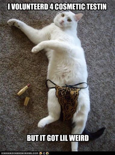 caption,captioned,cat,cosmetic,got,testing,thong,underwear,volunteered,weird