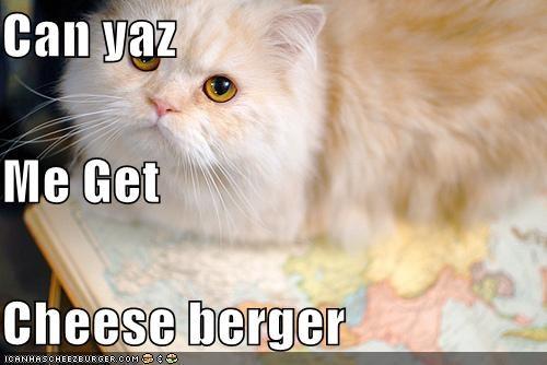 Cheezburger Image 4107415296