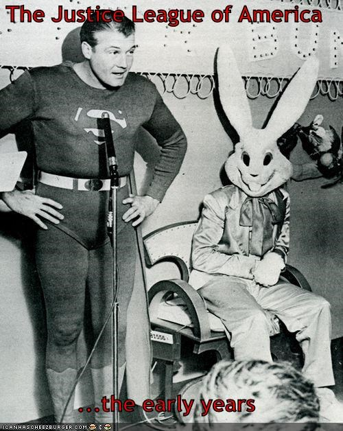bunny,funny,Photo,photograph,superman,wtf