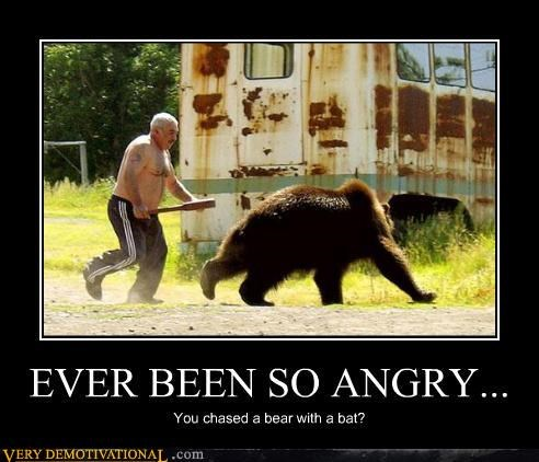 anger bad ass bat bears cool guy russia Terrifying