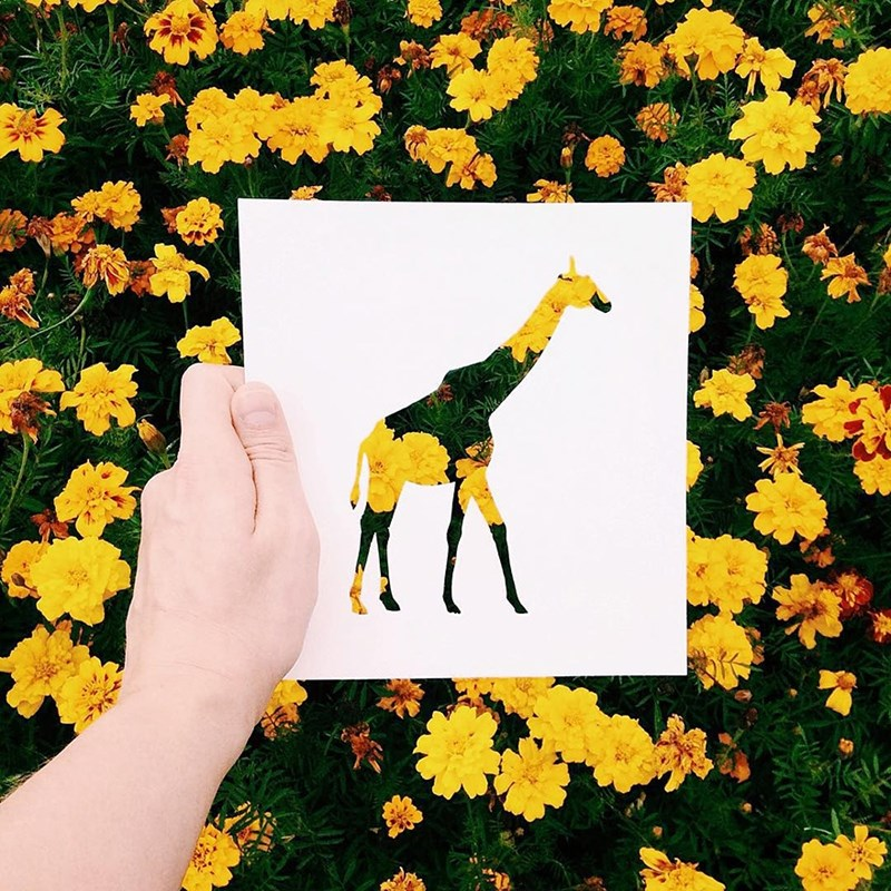 animal art combined with nature