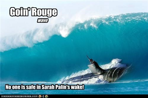 Goin' Rouge wave No one is safe in Sarah Palin's wake!