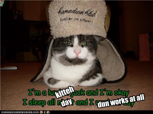 caption,captioned,cat,correction,kitteh,monty python,Music,parody,rewrite,singing