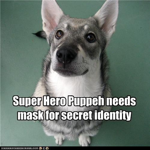 Super Hero Puppeh needs mask for secret identity