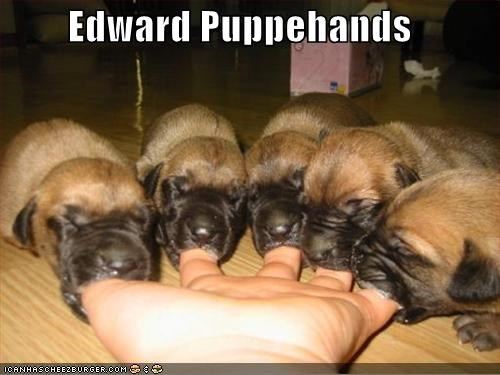 Edward Puppehands