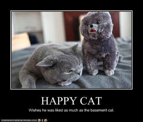 HAPPY CAT Wishes he was liked as much as the basement cat.