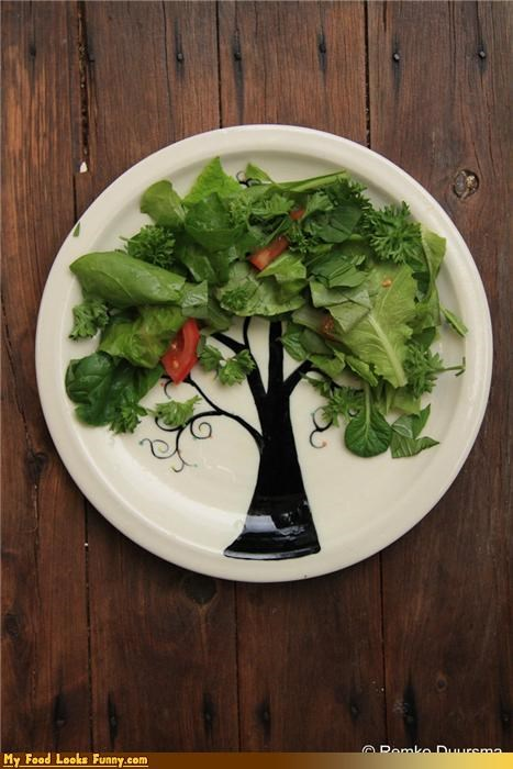 decor,lettuce,plate,salad,tree