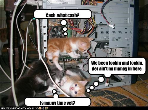 Cash, what cash? We been lookin and lookin, der ain't no money in here. Is nappy time yet?