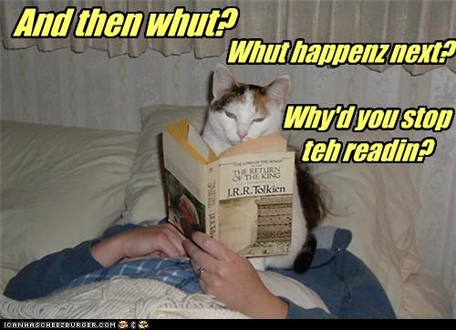 and then caption captioned cat cliffhanger confused Hall of Fame question reading stop stopped waiting what - 4116052480