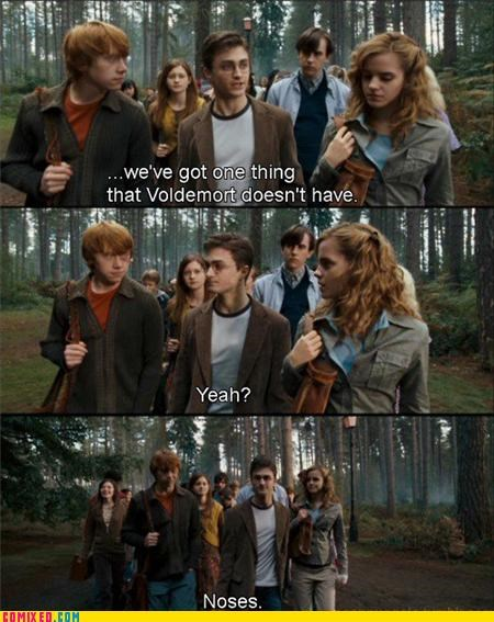 From the Movies Harry Potter magic missing parts noses puns ron voldemort