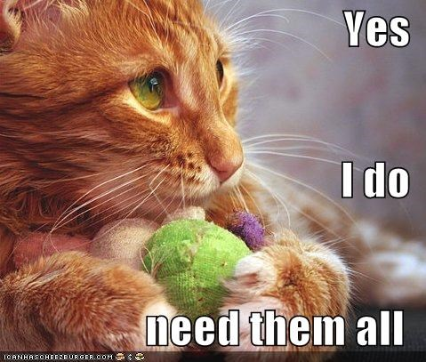 all of them balls caption captioned cat defensive greedy Hall of Fame hoarding I Do LOLs To Go need toys yes