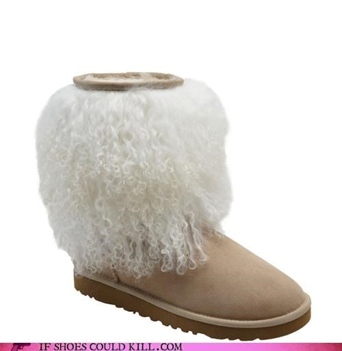 Animalia,boots,dogs,fur,pets,poodle,suede,uggs