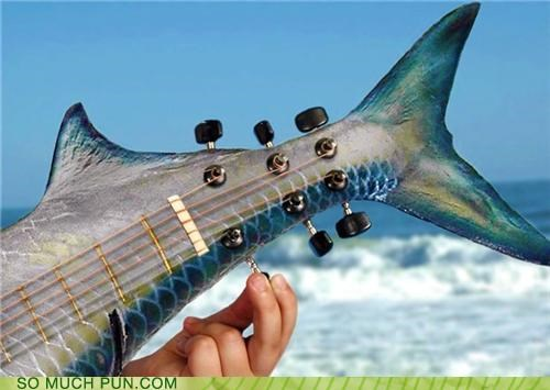 adage,but-you-cant-tuna-fish,carp,fish,f-sharp,g string,guitar,Music,tuna,tuning,you can tune a piano