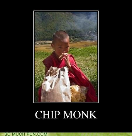 cheeky chip chipmunk combination monk two - 4119188480