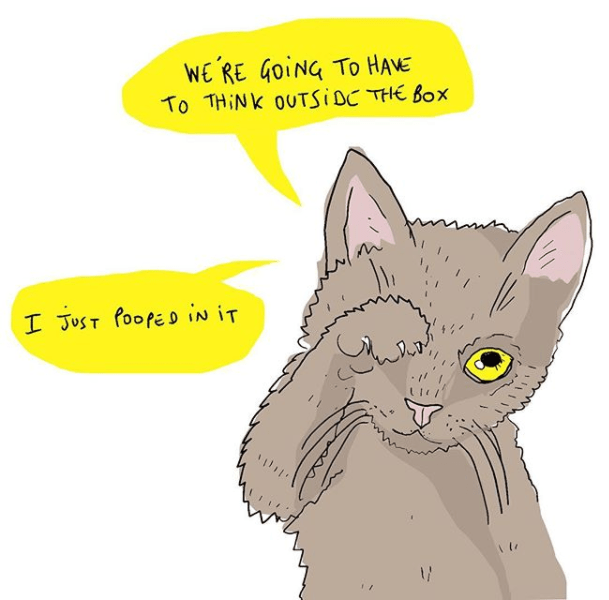 funny cat illustrations