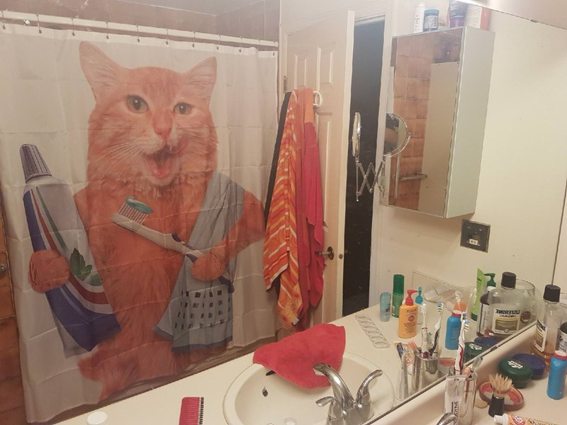 a funny list of animal shower curtains