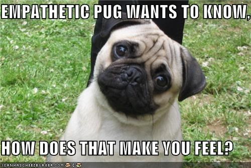concerned,counseling,cute,desire,empathetic,face,how do you feel,knowing,pug,puppy eyes,therapy