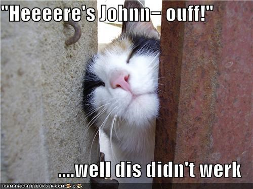 caption,captioned,cat,catchphrase,didnt work,FAIL,heres-johnny,stuck,the shining,whoops
