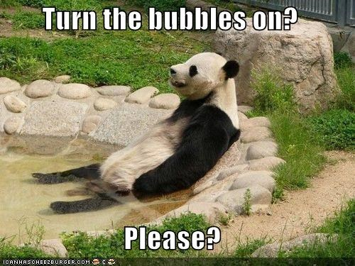 bathing bubbles caption captioned hot tub jacuzzi panda please question relaxing turn on