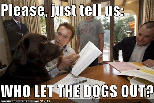 animals Arnold Schwarzenegger funny Hall of Fame lolz - 4123434496