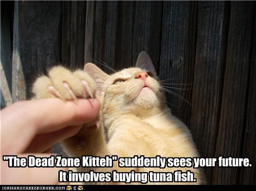 """The Dead Zone Kitteh"" suddenly sees your future. It involves buying tuna fish."