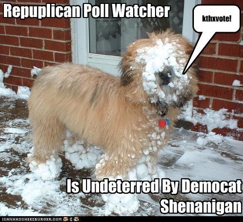 Repuplican Poll Watcher Is Undeterred By Democat Shenanigan kthxvote!