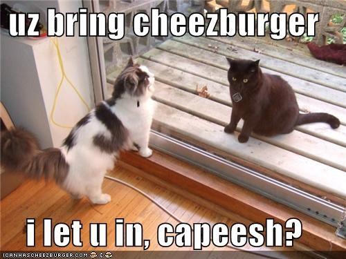 Cheezburger Image 4125806336