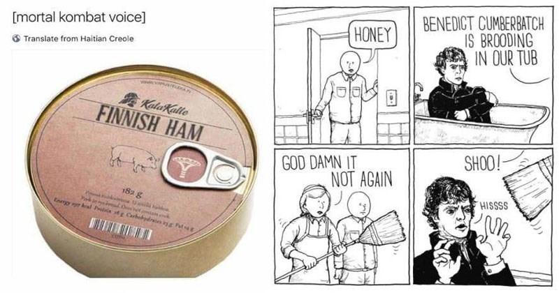 List of random memes and web comics, disney, batman, benedict cumberbatch, family, dads, cats, dogs, animals, comics, food.