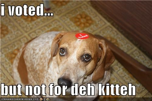 beagle election day kitten mixed breed not sticker voted voting - 4126080768