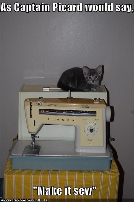 captain caption captioned cat cute Hall of Fame it kitten make make it so picard pun sew sewing machine Star Trek - 4126164480