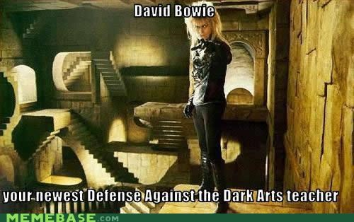 david bowie,Defense Against The Dark Arts,Harry Potter,Hogwarts,Memes