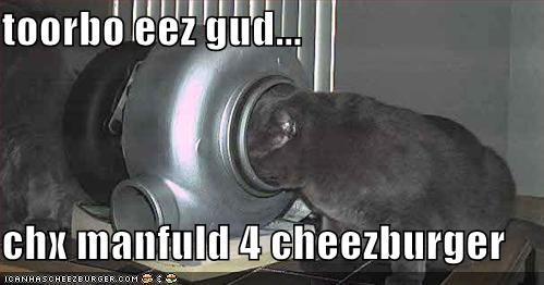 Cheezburger Image 412652288