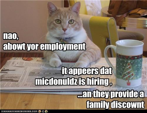 caption captioned cat cheezburgers discount discussion employment family hiring job McDonald's newspaper - 4126827264