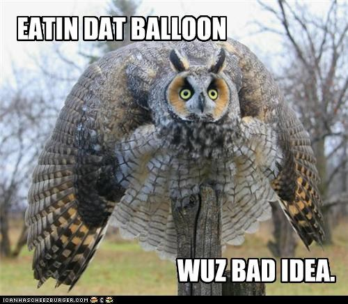 bad,bad idea,balloon,caption,captioned,eating,idea,mistake,oops,Owl