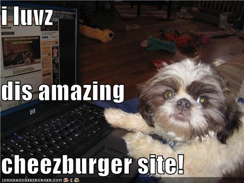 Cheezburger Image 4127226368