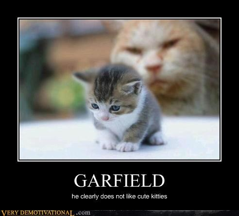 animals,cat,do not want,garfield,hilarious,kitties,Nermal,Sad