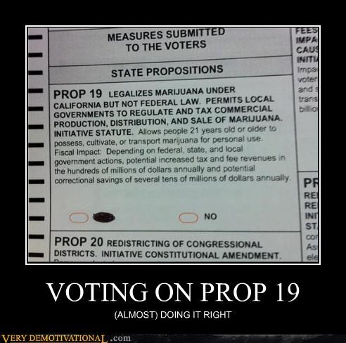 VOTING ON PROP 19 (ALMOST) DOING IT RIGHT