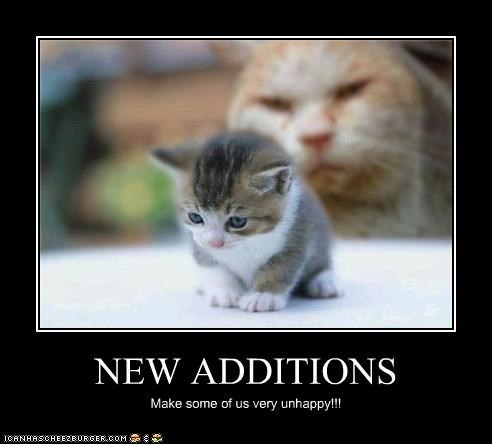 NEW ADDITIONS Make some of us very unhappy!!!