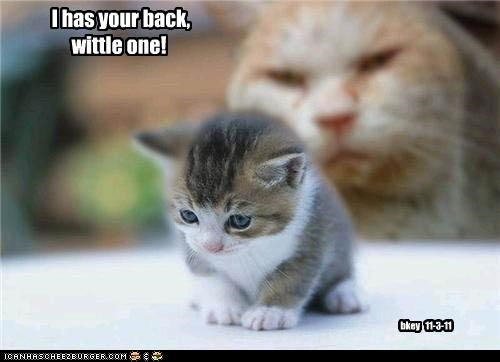 I has your back, wittle one! bkey 11-3-11