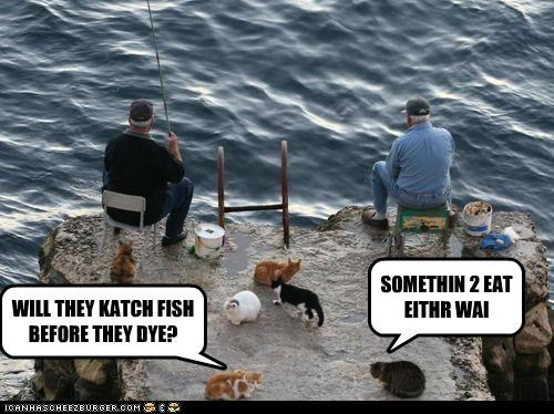 WILL THEY KATCH FISH BEFORE THEY DYE? SOMETHIN 2 EAT EITHR WAI