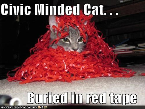 bureaucracy buried caption captioned cat civic civic-minded pun red ribbons tape
