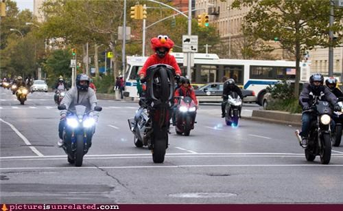costume,elmo,gangs,IRL,lol,motorcycle,new york,wtf