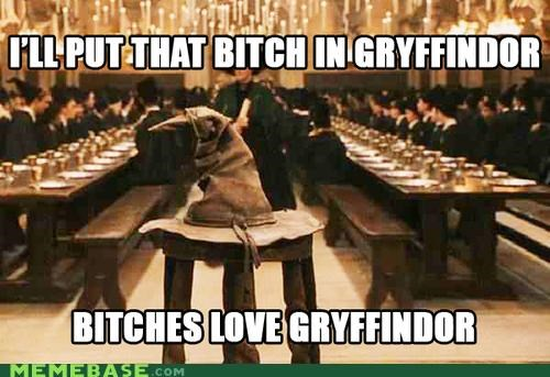 gryffindor Harry Potter Hogwarts Ladies Love Memes sorting hat