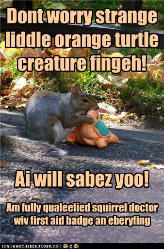 Dont worry strange liddle orange turtle creature fingeh! Ai will sabez yoo! Am fully qualeefied squirrel doctor wiv first aid badge an eberyfing