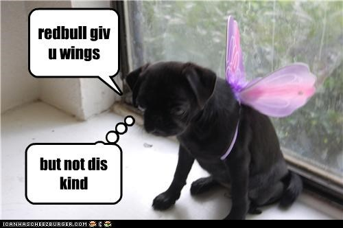 redbull giv u wings but not dis kind